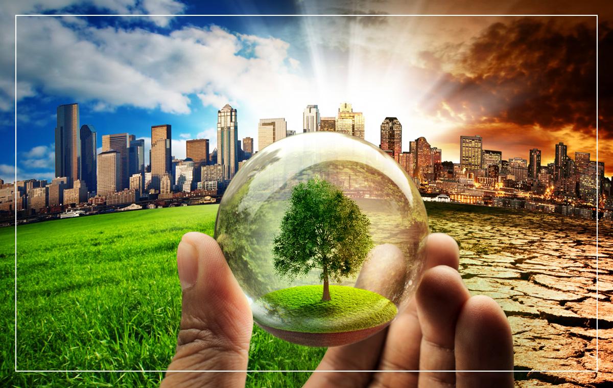 社会 脱 炭素